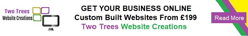 Basingstoke driving instructor - Two Tress Web Design & Creationswo Trees Web Design