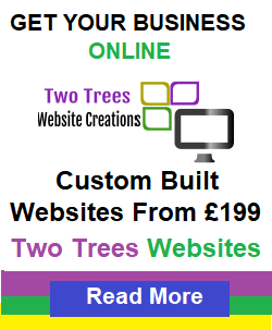 Basingstoke driving instructor - Two Tress Web Design & Creations