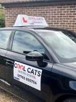 Cool Cats Driving School